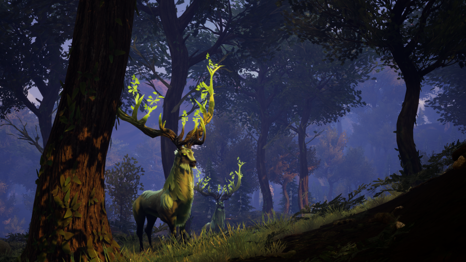 Elks_Alpha_Forest copy.png